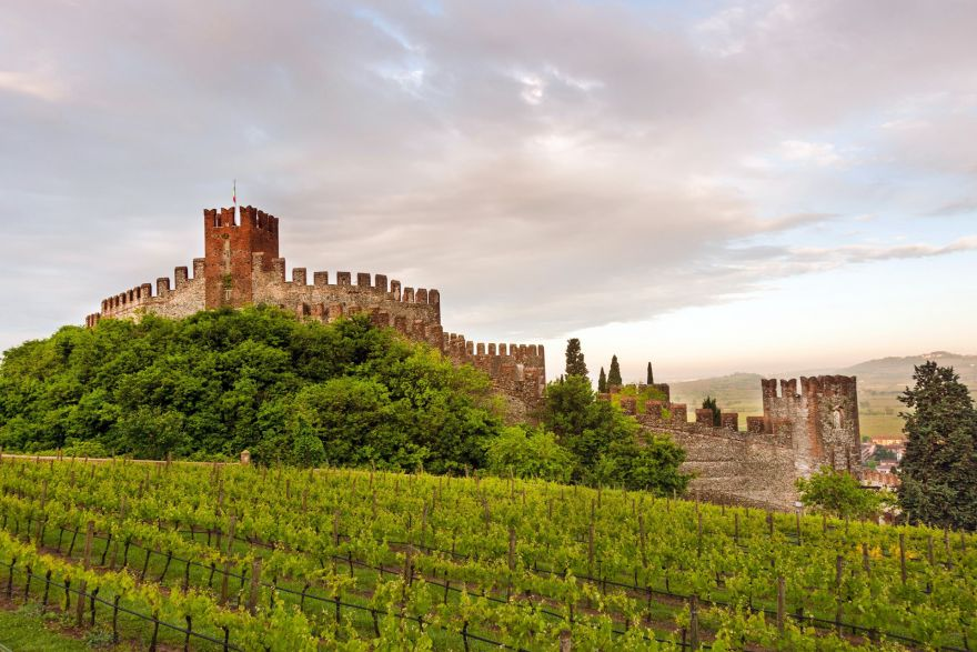 Soave and the surrounding area